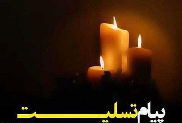 پیغام تسلیت استاندار آذربایجان شرقی در پی شهادت خلبان جنگنده میگ 29