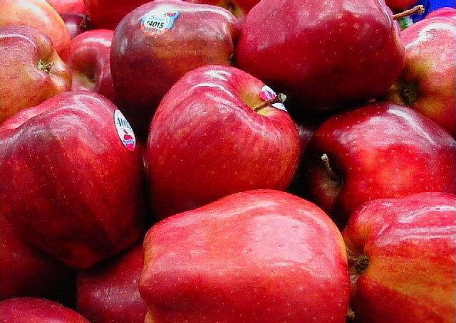 سیب درختی کهگیلویه و بویراحمد به نام استان های دیگر صادر می شود