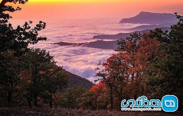 ممنوعیت ورود گردشگران به جنگل ابر اعلام شد