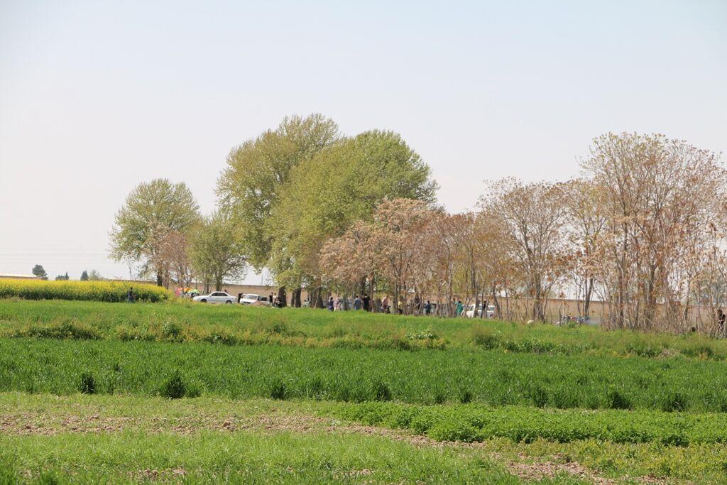 خبرنگاران پای مردم ورامین به تفرجگاه ها و مزارع کشاورزی باز شد