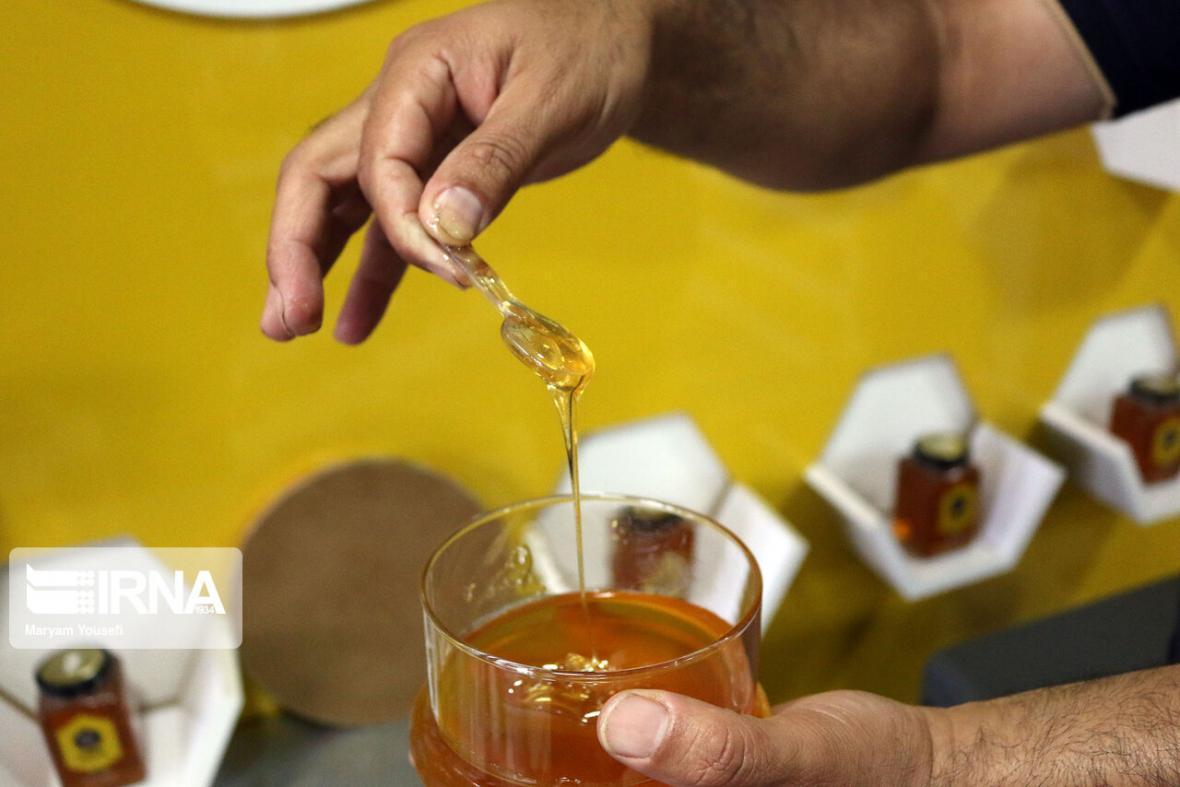 خبرنگاران سرانه مصرف عسل در همدان بالاتر از میانگین کشور است